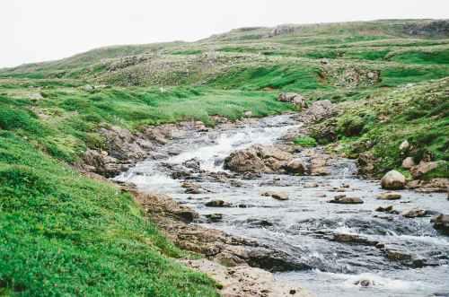 nature brook creek stream
