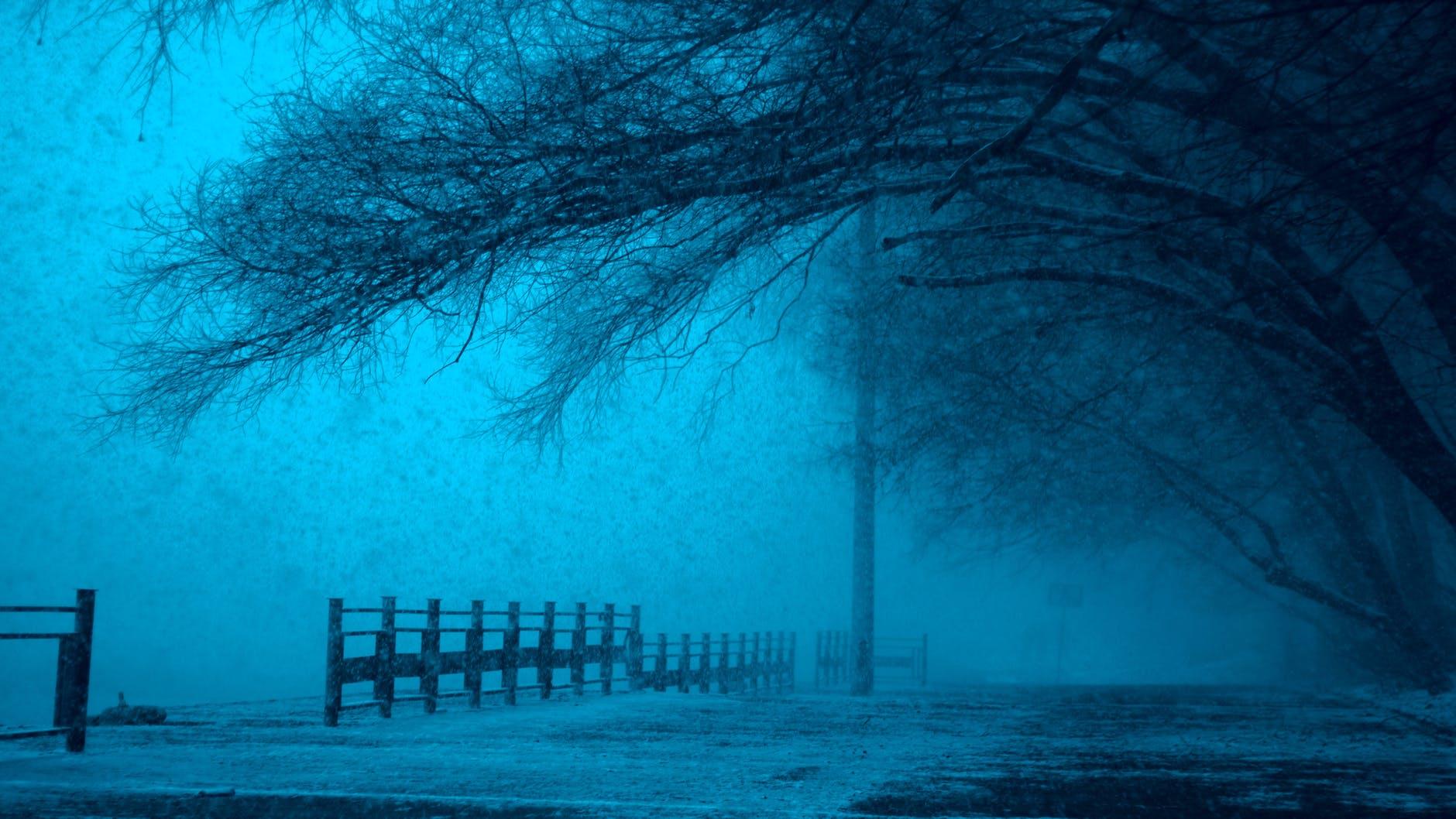 cold dark eerie fear