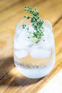 green leafed plant on drinking glass with ice and water