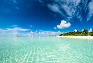 photo of blue sea