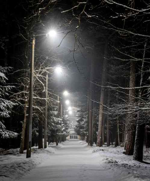 christmas cold dark fog