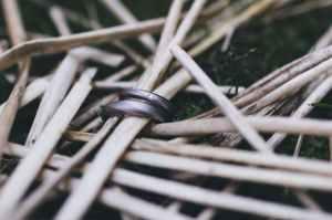 art bamboo beach black