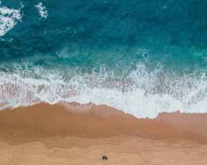 beach foam landscape nature