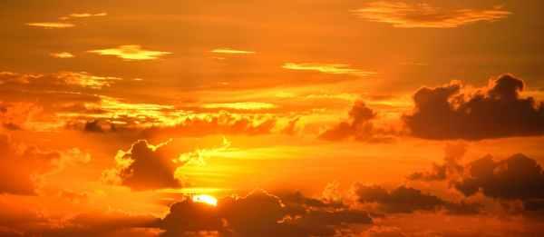 artistic backlit beauty breathtaking